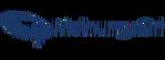 MeinungsOrt Logo klein